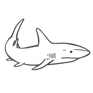 Borduurpatroon Haai