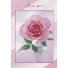 Kaart Zomaar roos